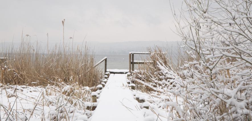 Ammersee-Steg-Schnee-Tanja-Hust